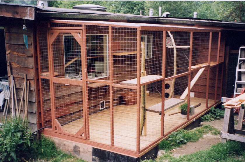 cat-enclosure
