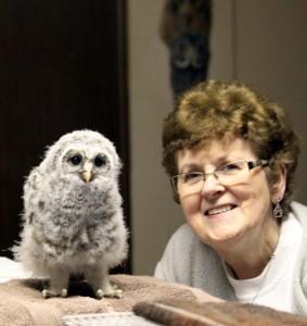 irene-baby-owl